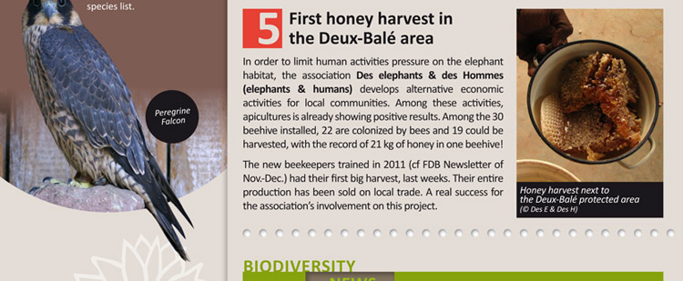 First honey harvest in the Deux-Balé area
