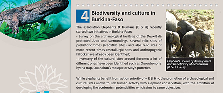 Biodiversity and culture in Burkina-Faso